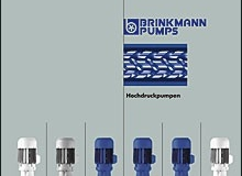brinkmann-pumps-1