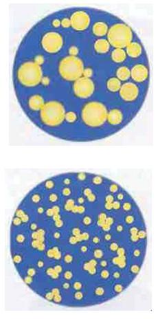 Рис.1. В процессе гомогенизации шарики жира разбиваются на гораздо более мелкие.