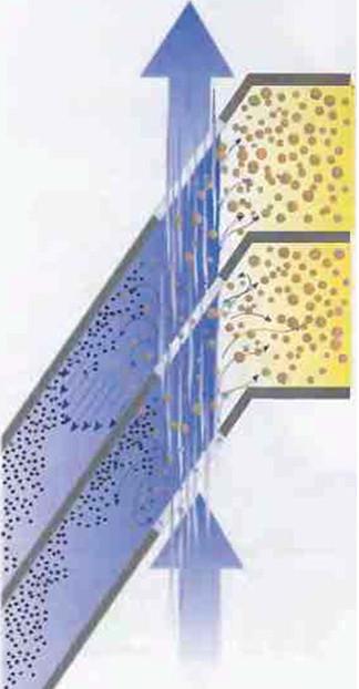 Рис.20 Вид части  тарелочного пакета в разрезе. Здесь  показано, как молоко поступает через распределительные отверстия и как от него отделяются жировые шарики.