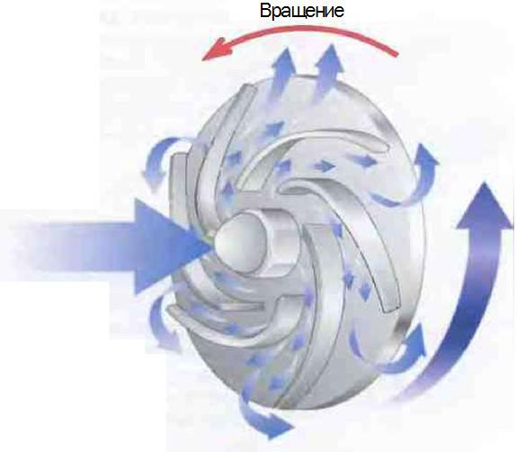 Рис.6 Направление потока  в центробежном насосе.